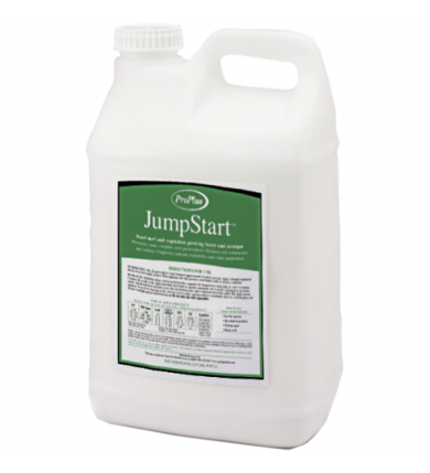 Profile Jumpstart